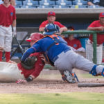 20160709 Clearwater Threshers v. St. Lucie - Bark at the Park - JR - Final-3913
