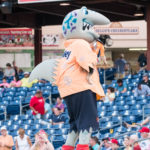 20160709 Clearwater Threshers v. St. Lucie - Bark at the Park - JR - Final-4325