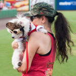 20160709 Clearwater Threshers v. St. Lucie - Bark at the Park - JR - Final-8138