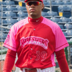 20160722 Clearwater Threshers v. Fort Myers Miracle - Breast Cancer Awareness Night - JR - Final-1828